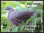 Cl: Maroon Pigeon (Columba thomensis)(Endemic or near-endemic) (not catalogued)  (2008)  [4/50]