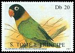 Cl: Yellow-collared Lovebird (Agapornis personatus)(Out of range) (not catalogued)  (1987)