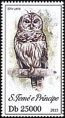 Cl: Barred Owl (Strix varia)(Out of range)  new (2013)