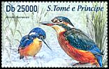 Cl: Common Kingfisher (Alcedo atthis)(Out of range) (not catalogued)  (2013)
