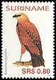 Cl: Black-collared Hawk (Busarellus nigricollis) SG 2132 (2005) 95