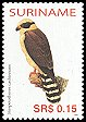Cl: Laughing Falcon (Herpetotheres cachinnans) SG 2127 (2005) 30