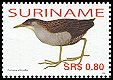 Cl: Ash-throated Crake (Porzana albicollis) SG 2164 (2006) 95