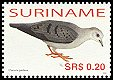Cl: Blue Ground-Dove (Claravis pretiosa) SG 2161 (2006) 40