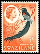 Cl: Long-tailed Widowbird (Euplectes progne) SG 96 (1962) 25