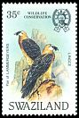 Cl: Lammergeier (Gypaetus barbatus) <<Lingce>> (Repeat for this country)  SG 426 (1983)