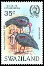 Cl: Southern Bald Ibis (Geronticus calvus) <<Umfumbane>> (Repeat for this country)  SG 449 (1984)