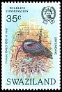 Cl: Southern Bald Ibis (Geronticus calvus) <<Umfumbane>> (Repeat for this country)  SG 451 (1984)