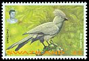 Cl: Grey Go-away-bird (Corythaixoides concolor) <<Umklewu>>  SG 657 (1995)