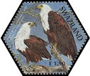 Cl: African Fish-Eagle (Haliaeetus vocifer)(Repeat for this country)  SG 741d (2004)  [3/55]