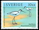 Cl: Pied Avocet (Recurvirostra avosetta) <<Sk&auml;rfl&auml;cka>> (Repeat for this country)  SG 2295 (2003) 240