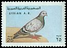 Cl: Rock Pigeon (Columba livia) SG 1373 (1978) 300