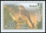 Cl: Curve-billed Thrasher (Toxostoma curvirostre)(Out of range and no other stamp)  SG 2324 (2009) 240 [6/25]