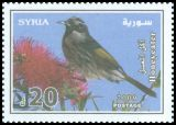 Cl: White-cheeked Honeyeater (Phylidonyris nigra)(Out of range and no other stamp)  SG 2327 (2009) 240 [6/25]
