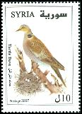 Cl: European Turtle-Dove (Streptopelia turtur) SG 2271 (2007) 110 [4/42]