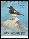 Cl: Little Forktail (Enicurus scouleri) SG 1991 (1991) 85