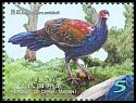 Cl: Swinhoe's Pheasant (Lophura swinhoii)(Endemic or near-endemic)  new (2014)  [9/7]