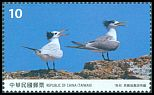 Cl: Chinese Crested Tern (Sterna bernsteini)(Endemic or near-endemic)  new (2017)  [11/29]