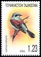 Cl: Red-backed Shrike (Lanius collurio) SG 247e (2003)  [2/14]
