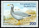 Cl: Bar-headed Goose (Anser indicus) SG 80 (1995) 60