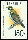 Cl: Greater Honeyguide (Indicator indicator) SG 1359 (1992) 140