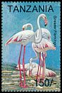 Cl: Greater Flamingo (Phoenicopterus roseus)(Repeat for this country)  SG 1774 (1994)