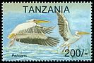 Cl: Great White Pelican (Pelecanus onocrotalus)(Repeat for this country)  SG 1775 (1994)