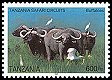 Cl: Cattle Egret (Bubulcus ibis)(Repeat for this country)  SG 2452 (2005)