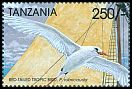 Cl: Red-tailed Tropicbird (Phaethon rubricauda)(Out of range) (not catalogued)  (1999)