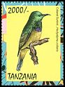 Cl: Collared Sunbird (Hedydipna collaris) new (2013)