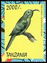 Cl: Eastern Olive-Sunbird (Cyanomitra olivacea) new (2013)  [9/6]