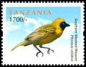 Cl: Southern Masked-Weaver (Ploceus velatus)(Out of range)  new (2011)  [7/44]