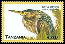 Cl: Little Bittern (Ixobrychus minutus)(not catalogued)  (1999)
