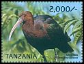Cl: Olive Ibis (Bostrychia olivacea bocagei) new (2015)  [11/24]