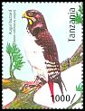 Cl: Augur Buzzard (Buteo augur)(I do not have this stamp)  new (2012)