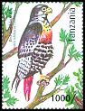 Cl: Jackal Buzzard (Buteo rufofuscus)(Out of range) (I do not have this stamp)  new (2012)  [8/15]