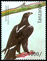 Cl: Verreaux's Eagle (Aquila verreauxii)(I do not have this stamp)  new (2012)