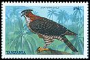 Cl: Javan Hawk-Eagle (Spizaetus bartelsi)(Out of range) (not catalogued)  (1998)