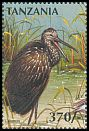 Cl: Limpkin (Aramus guarauna)(Out of range) (not catalogued)  (1997)