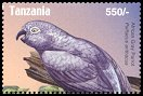 Cl: Grey Parrot (Psittacus erithacus)(Repeat for this country) (not catalogued)  (2004)
