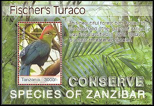 Cl: Fischer's Turaco (Tauraco fischeri)(Endemic or near-endemic)  new (2006)  [4/2]