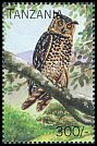 Cl: Cape Eagle-Owl (Bubo capensis)(not catalogued)  (1996)