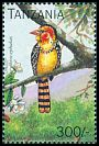 Cl: Red-and-yellow Barbet (Trachyphonus erythrocephalus)(Repeat for this country) (not catalogued)  (1996)