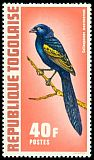 Cl: Yellow-shouldered Widowbird (Euplectes macrourus) SG 895 (1972)