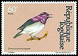 Cl: Violet-backed Starling (Cinnyricinclus leucogaster) SG 1531 (1981) 40