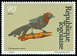 Cl: Red-collared Widowbird (Euplectes ardens) SG 1532 (1981) 55