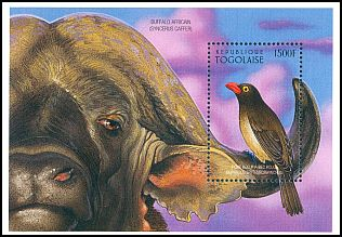 Cl: Red-billed Oxpecker (Buphagus erythrorhynchus)(Out of range)  new (1996)