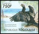 Cl: Long-tailed Cormorant (Phalacrocorax africanus)(I do not have this stamp)  new (2011)