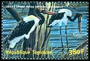 Cl: Saddle-billed Stork (Ephippiorhynchus senegalensis) new (2001)
