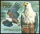 Cl: African Fish-Eagle (Haliaeetus vocifer)(Repeat for this country) (I do not have this stamp)  new (2011)